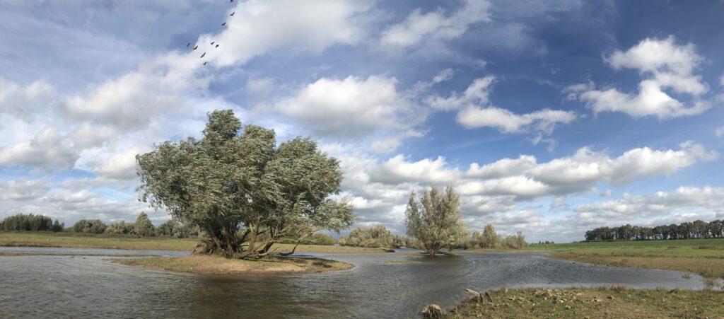 riviernatuur