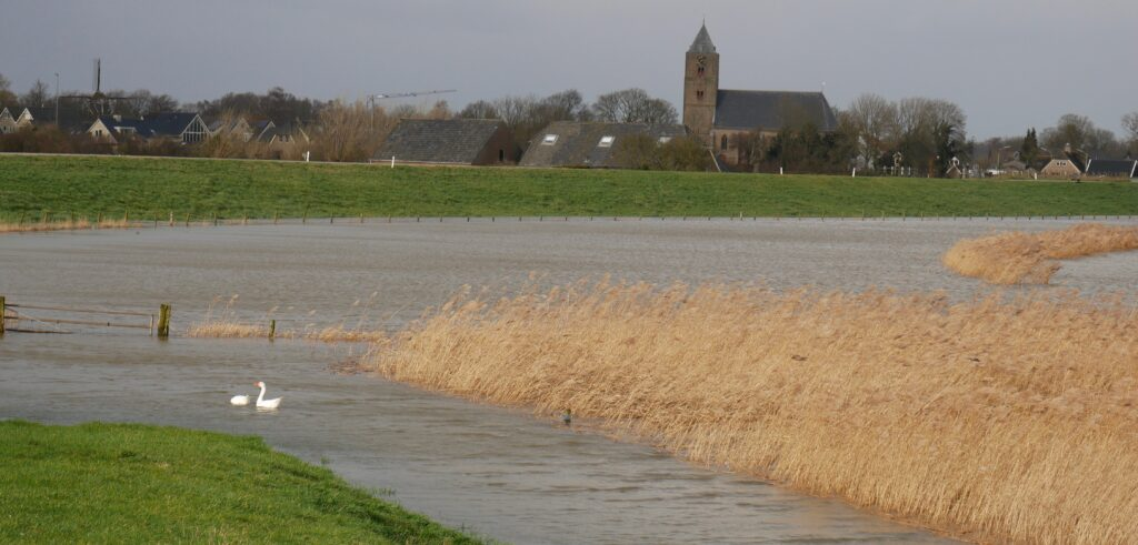 Zicht op Zalk bij hoog water in de IJssel