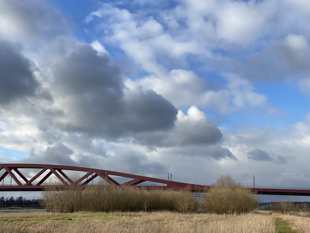 rivierbosje Hanzeboog
